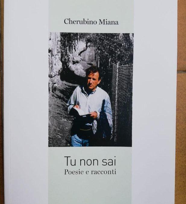 """TU NON SAI"" di Cherubino Miana"